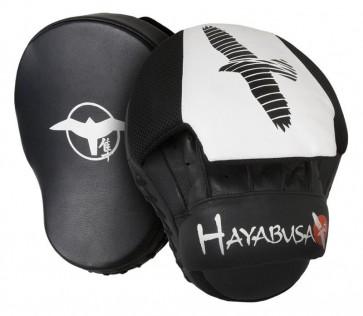 Hayabusa 2 colpitori focus